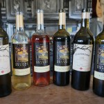 Wine & Travel: Texas HillCountry